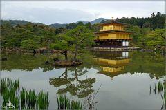 Kyoto IX