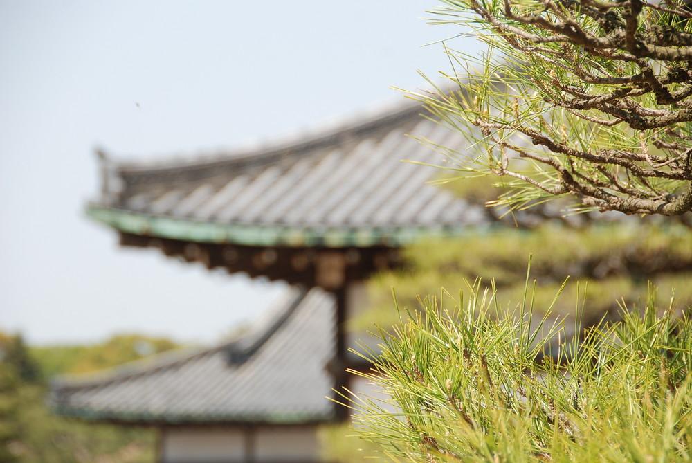 Kyoto - Nijo Castel