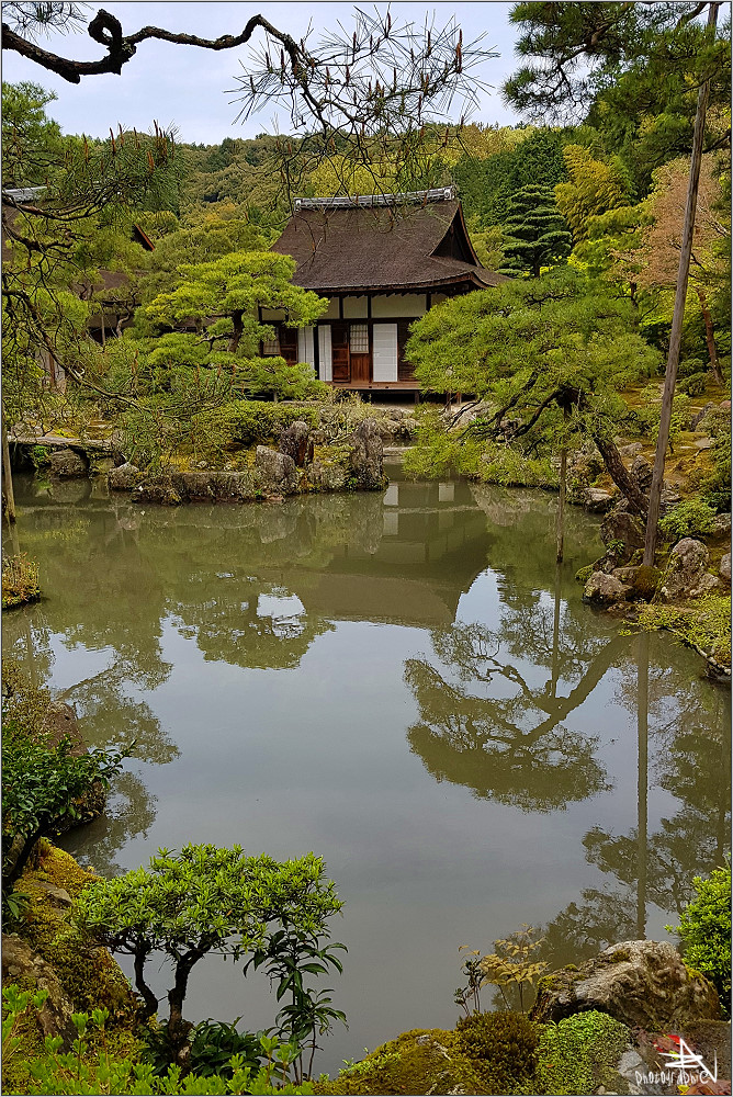 Kyoto XIX