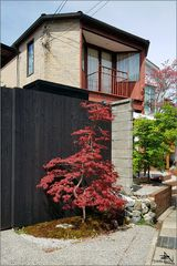 Kyoto XX
