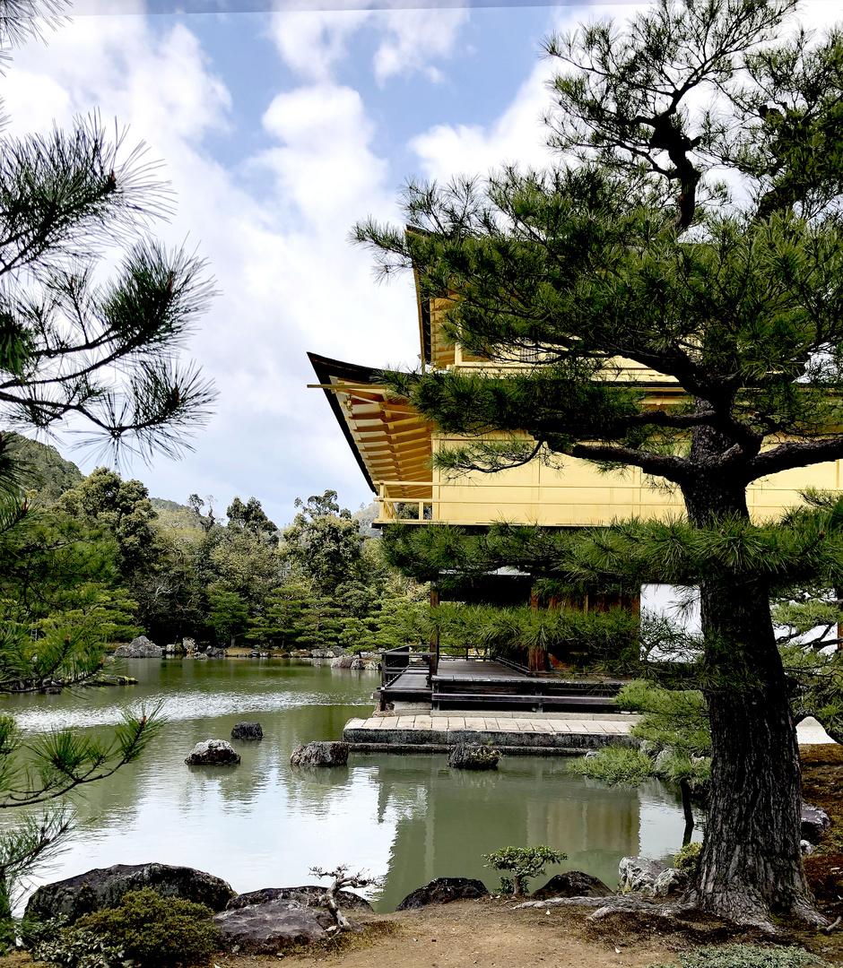 Kyoto,der Goldene Tempel .