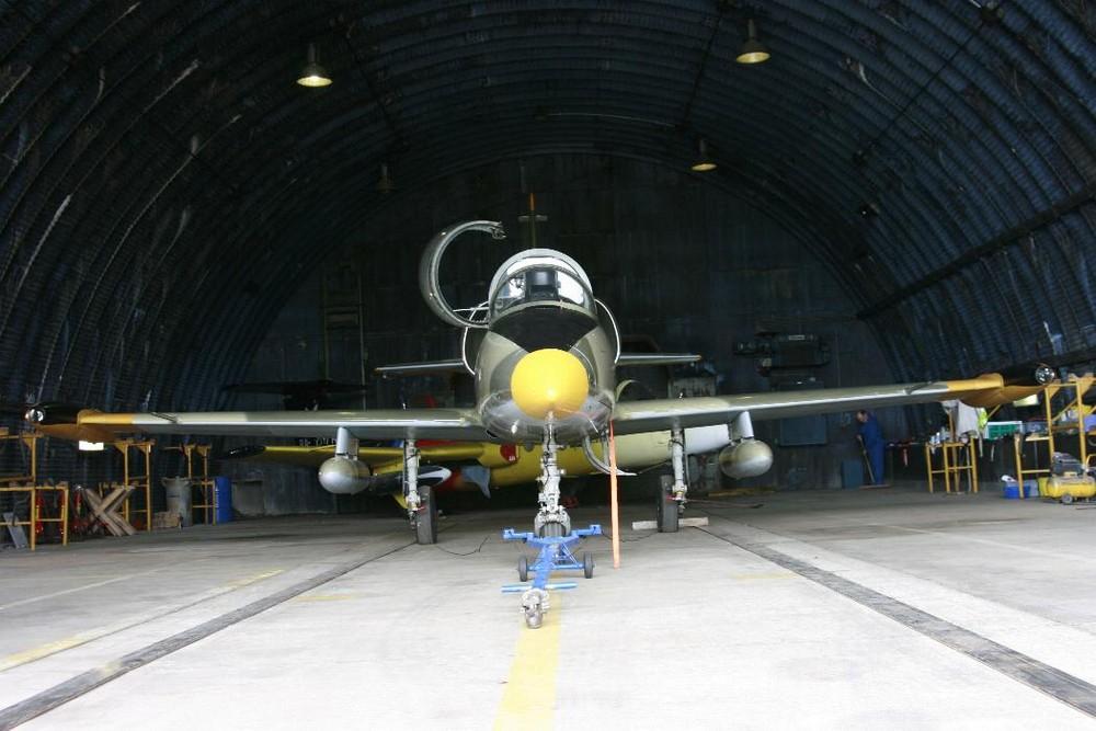 #### L-39 Albatros ####