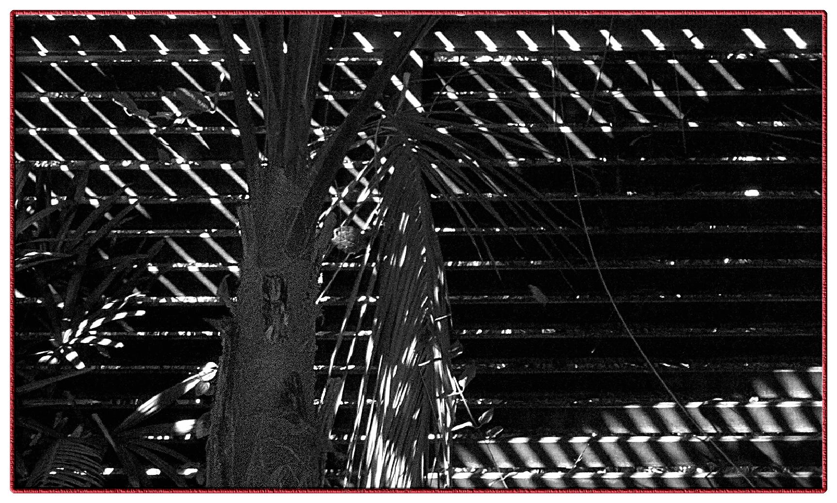 L ALBARDA Pedreguer Spain 19