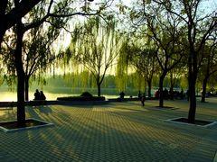 L' automne a Beijing. 2