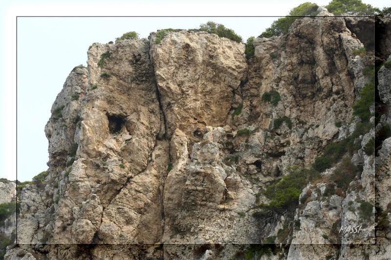 L' elefante roccioso