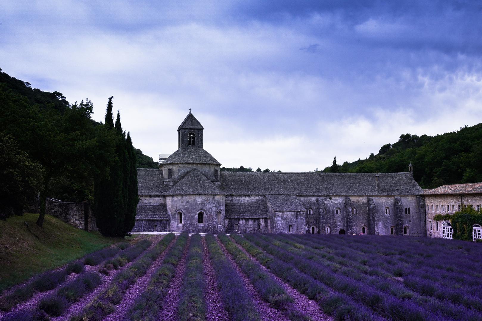 La Abadía de Senanque