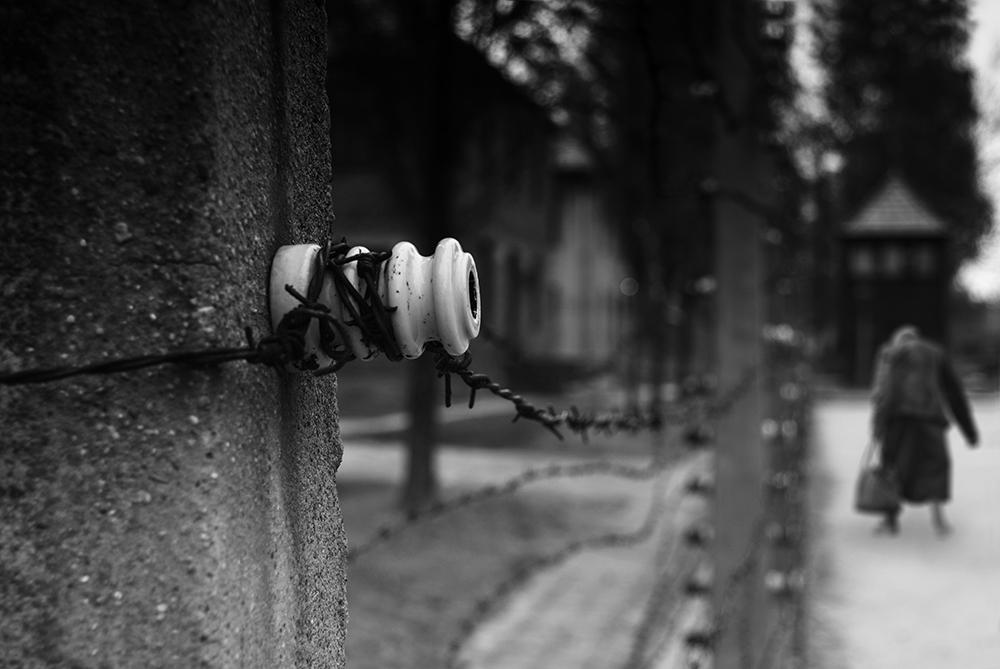 La alambrada.. (Auschwitz)