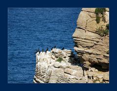 La barca dei corvi...particolare.