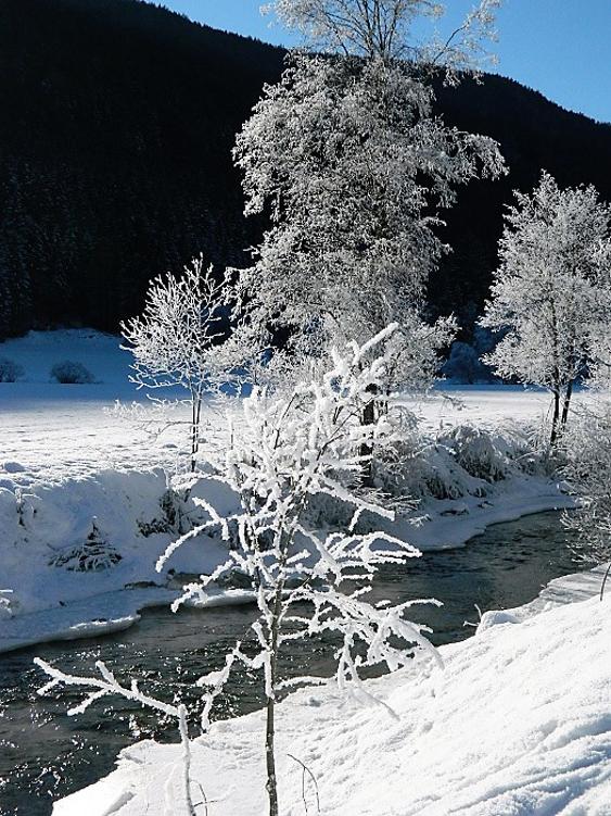 La bellezza della neve al sole