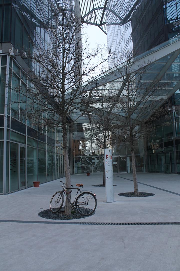 la bici in Comune