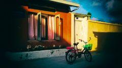 - La bicicletta -
