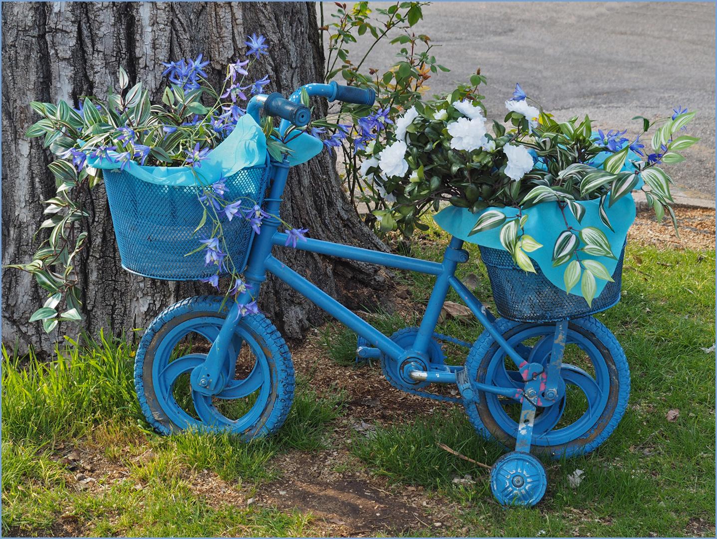 La bicyclette bleue, version pour enfants