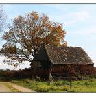 La cabane abandonnée (Version couleurs)