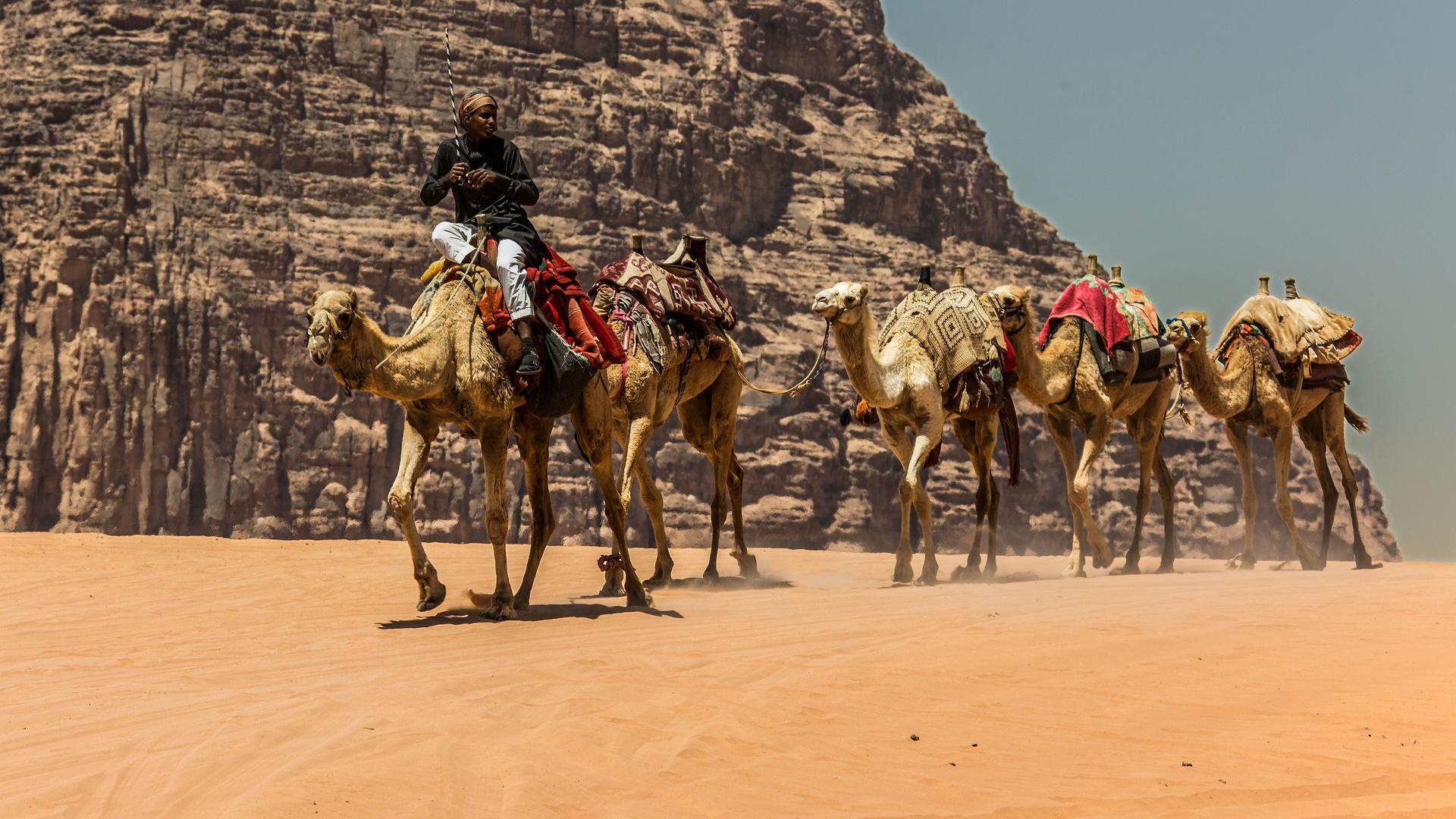 La Caravane, Wadi Rum