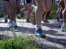 La carrera