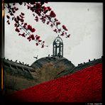 La casa dei corvi