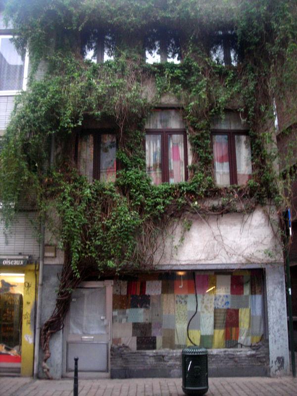 La casa di.....Arlecchino