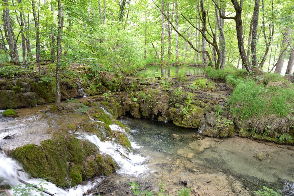 La cascata nel bosco