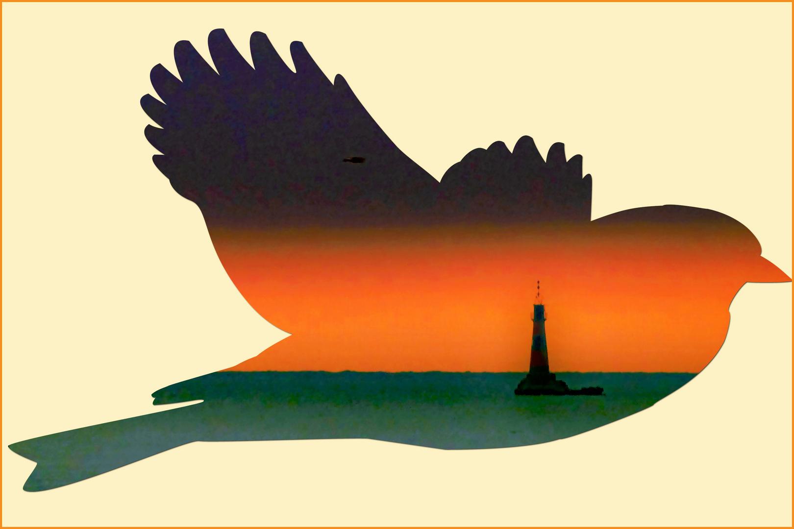 la colombe de la paix ....