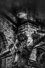 La crucifixion d'un arbre
