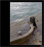 La crue de la Seine a refait des siennes... (19)