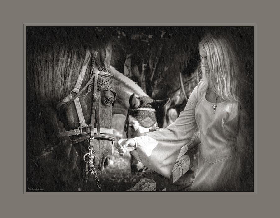 La dama e il cavallo