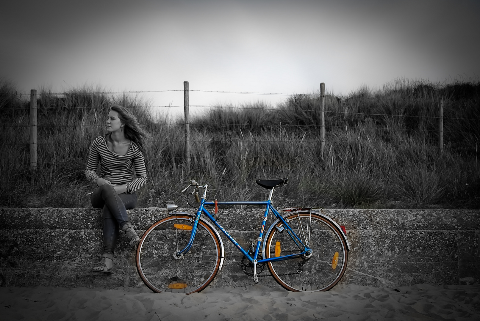 La demoiselle à la bicyclette bleue