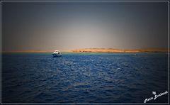 """"""" la dove il deserto incontra il mare"""""""