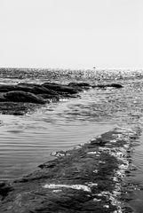 là dove il mare luccica e tira forte il vento