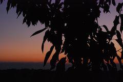 La dove il sole va a dormire........e i sogni rimangono