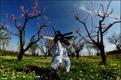 la fata della primavera