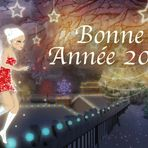 La fée Manouchette vous souhaite une joyeuse année 2014