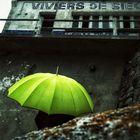 La femme au parapluie; atteint les Viviers de Sieck (107)