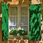 """la fenêtre aux volets """"verts feuilles"""""""