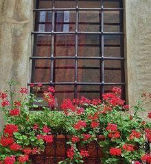 la fenêtre emprisonnèe dans la fenetre...,