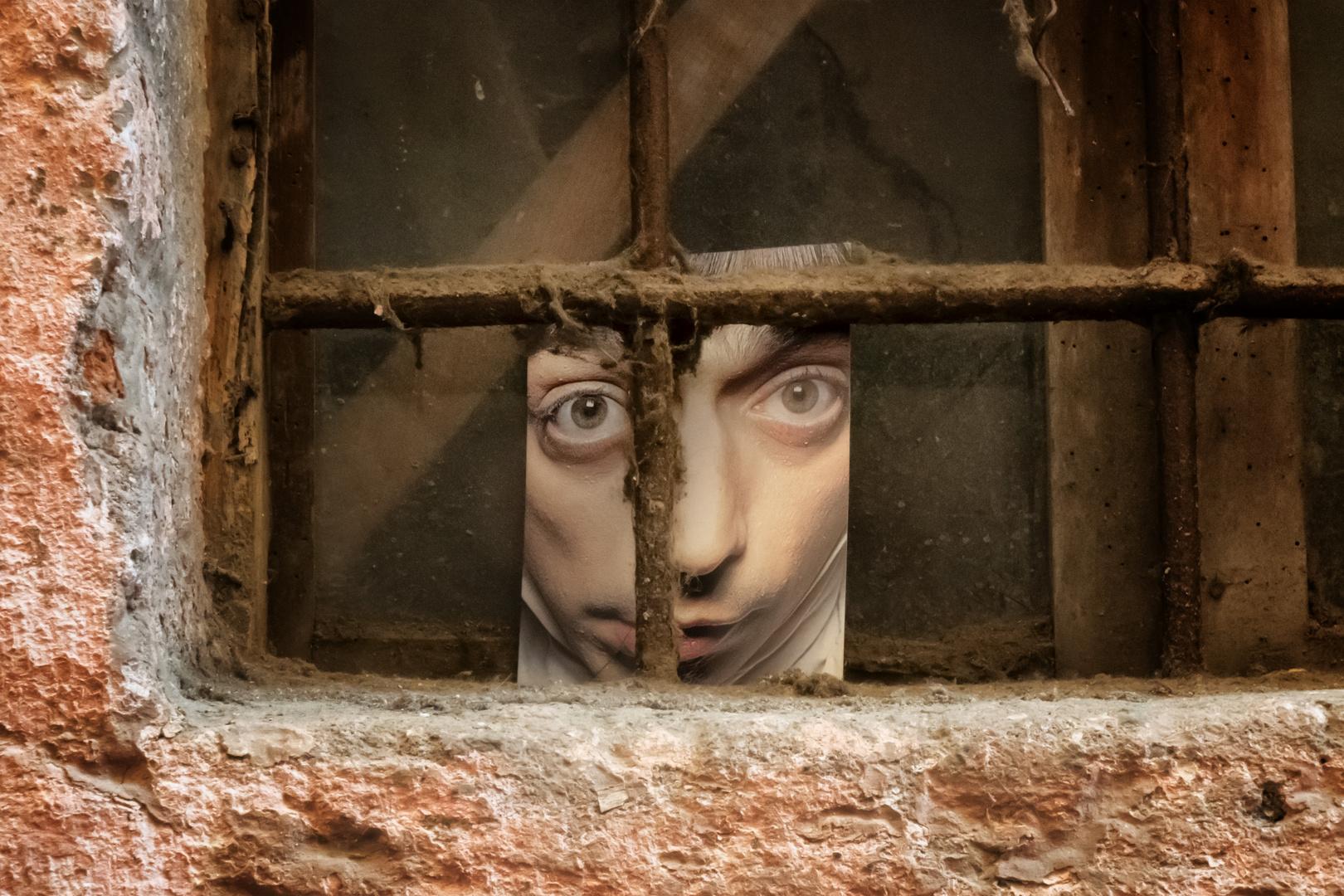 La finestra del giullare Nespolo