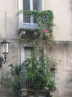 Valeria calabria fotos foto autrice fotocommunity - La finestra di fronte roma ...