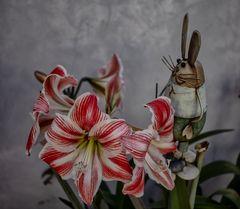 La flor y el conejo