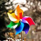 La girandola..e i suoi colori..