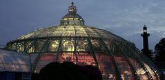 La grande serre Laeken