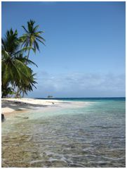 La Isla Iguana