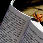 La lectrice.