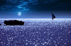 la luna e il surf