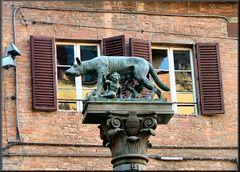 La Lupa a Siena
