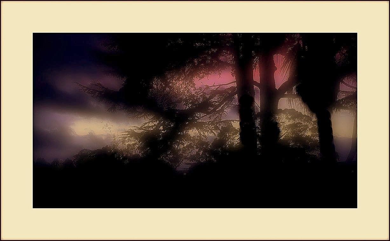 la luz de la mañana(Invierno) PARA MIGUEL ZABALLA