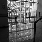 La luz y sus reflejos