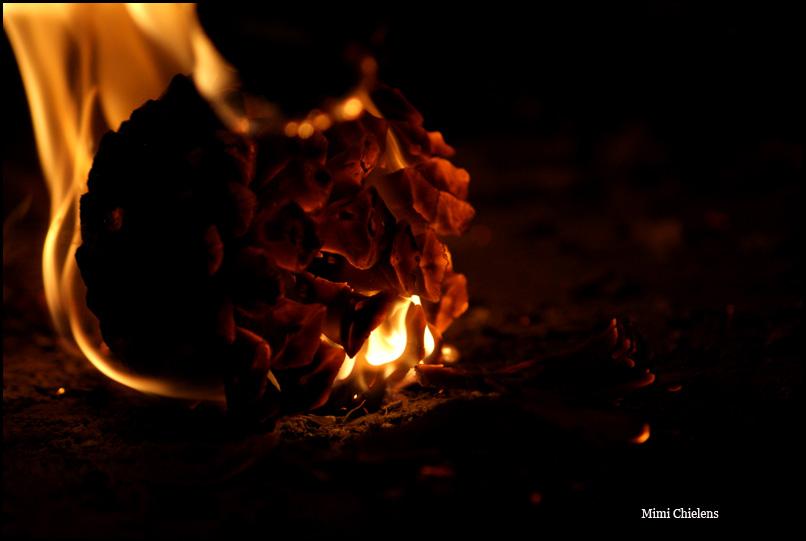 La magia del fuego 4