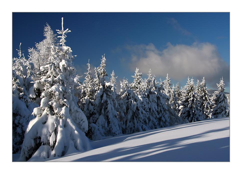 La magie de la neige