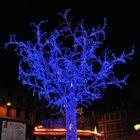 la magie du bleu