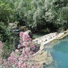 La mia laguna blu